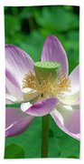 Lotus--fading IIi Dl0081 Bath Towel