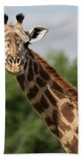Lovely Giraffe In Tarangire - Square Format Bath Towel