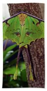 Luna Moth Bath Towel