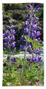 Lupines At The River Bath Towel