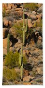 Lush Arizona Desert Landscape Bath Towel