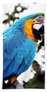 Macaw Parrot Bath Towel