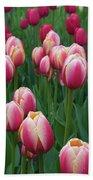 Mackinac Island Tulips 10681 Bath Towel