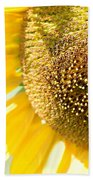 Macro Photography Of Sunflower Bath Towel