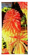 Madeira Funchal  Tritoma, Red Hot Poker, Torch Lily, Poker Plant Bath Towel