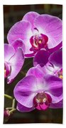 Magenta Orchids Bath Towel