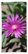 Magenta Purple Desert Moss Rose Bath Towel