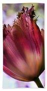 Magenta Tulip Bath Towel