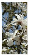 Magnolia Flowers White Magnolia Tree Flowers Art Prints Bath Towel