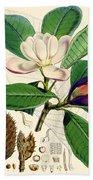 Magnolia Hodgsonii Bath Towel