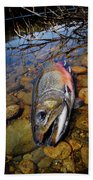 Maine Brookie Bath Towel