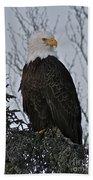 Majestic Bath Towel