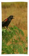 Male Red-winged Blackbird Singing Bath Towel