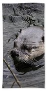 Male River Otter Bath Towel