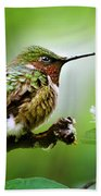 Male Ruby-throated Hummingbird At Rest Bath Towel