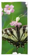 Male Tiger Swallowtail 5416 Bath Towel