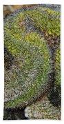 Mammillaria Red Cap Cristata Bath Towel