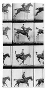 Man And Horse Jumping Bath Towel by Eadweard Muybridge