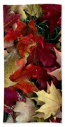 Maple Leaf Colors Hand Towel