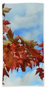 Maple Leaves Against The Sky  Bath Towel