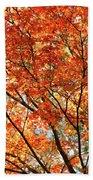 Maple Tree Foliage Bath Towel