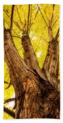 Maple Tree Portrait 2 Bath Towel