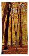Maple Woods Trail 3 Bath Towel