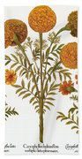 Marigolds, 1613 Bath Towel