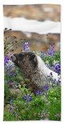 Marmot In The Wildflowers Bath Towel