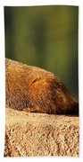 Marmot Life Bath Towel