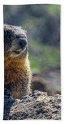 Marmot On The Ridge Bath Towel