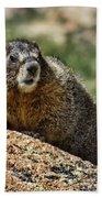 Marmot Bath Towel