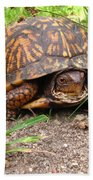 Maryland Box Turtle Bath Towel