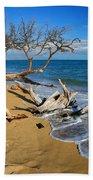 Maui Beach Dirftwood Fine Art Photography Print Bath Towel