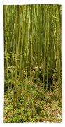 Maui's Thick Bamboo Bath Towel