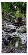 Mcdonald Lake Stream Bath Towel