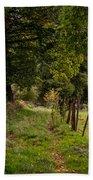 Meadow Grass Path Bath Towel