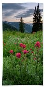 Meadow Of Wildflowers In The Wasatch Hand Towel by James Udall