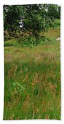 Meadow With Birch Trees Bath Towel
