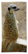 Meerkat Portrait Bath Towel