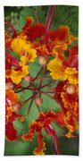 Mexican Bird Of Paradise Bath Towel