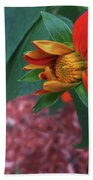 Mexican Sunflower In Mid Bloom Bath Towel