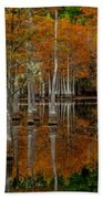 Mill Pond Reflections Bath Towel