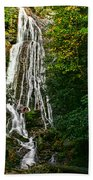 Mingo Falls - Gsmnp Bath Towel