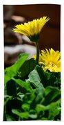 Miniature Yellow Gerbera Daisies Bath Towel