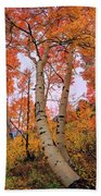 Moments Of Fall Hand Towel