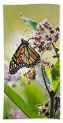 Monarch Butterfly On Milkweed Bath Towel