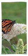 Monarch On A Butterfly Bush Bath Towel