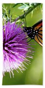 Monarch Thistle Bath Towel