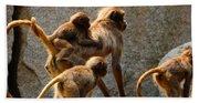 Monkey Family Bath Towel